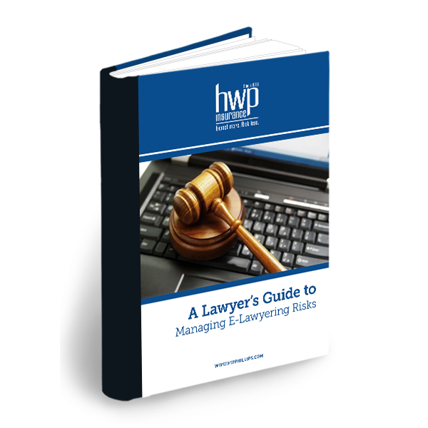 Lawyer's Guide to Managing E-Lawyering Risks