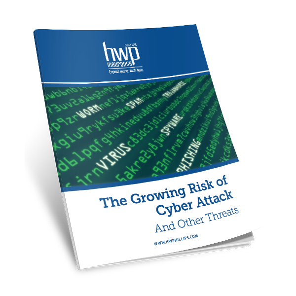 The Growing Risk of Cyber Attack and Other Security Threats